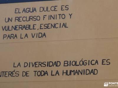 Sierra de Gredos; Barco Ávila; senderismo gratis madrid cristal de roca senderismo senderismo madrid